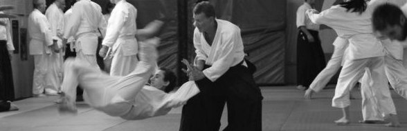 Aikido Training